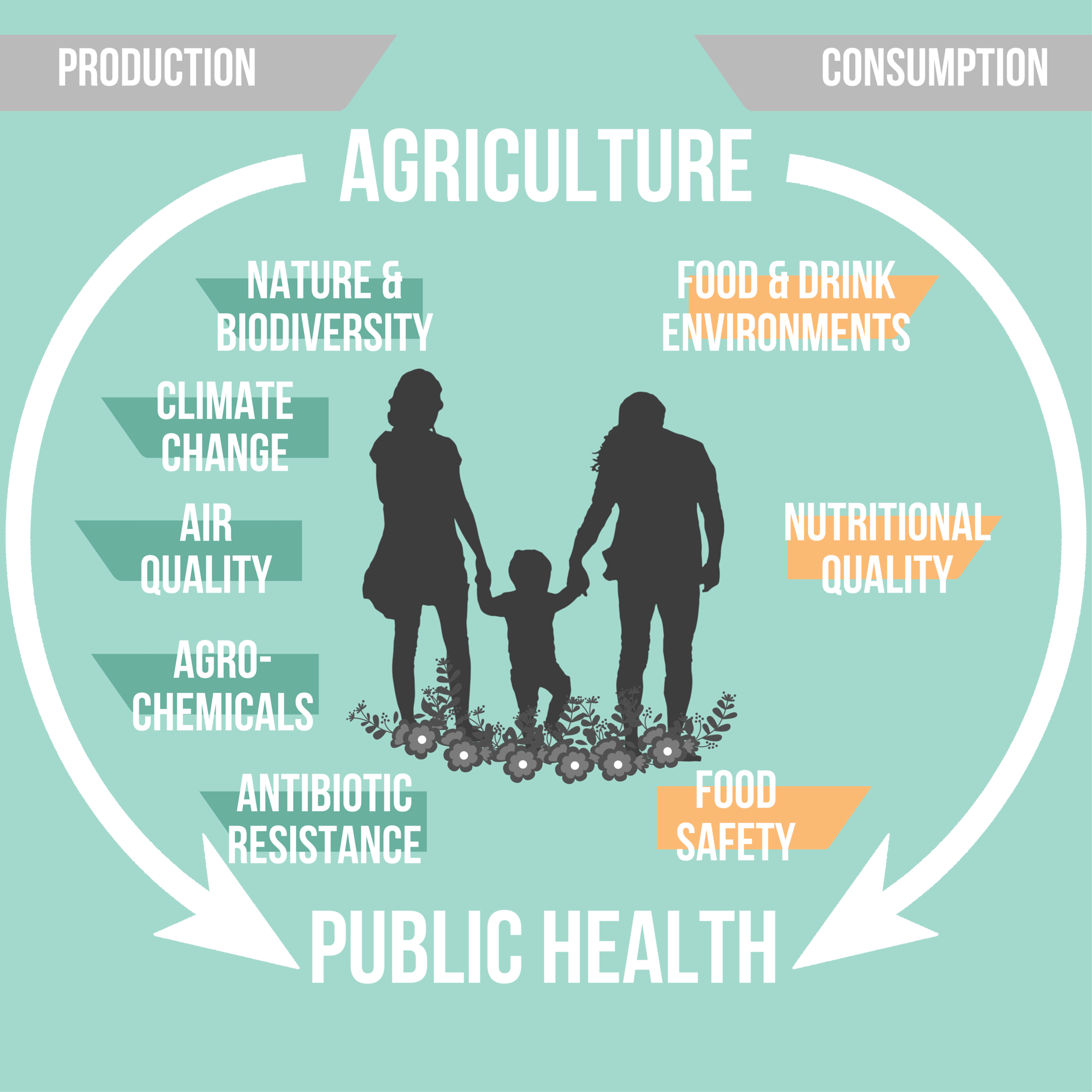Impacts of agriculture on health – the livestock connection